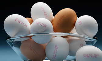 Continuous Inkjet applications for Eggs